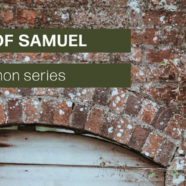 Recent Series // The Life of Samuel Series